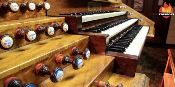 -50% на органные концерты